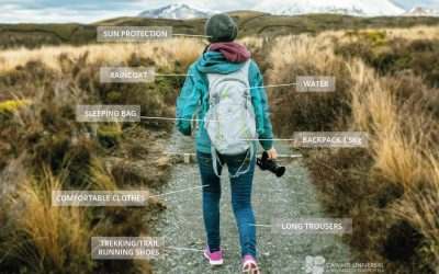 The Best Equipment for the Camino Universal
